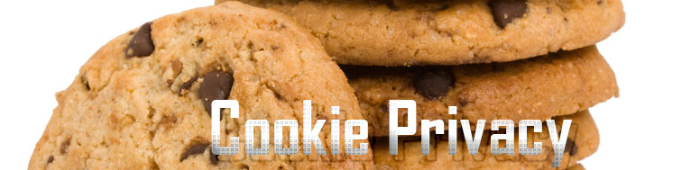 Web Privacy: i Cookie
